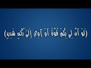 لو أنّ لي بكم قوّة - معاوية عبد الوهّاب - 22