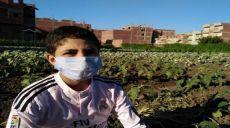 كورونا شمّاعةُ فشلِ منظّمةِ العمل الدّوليّة وصندوق الأمم المتّحدة للطّفولة في مكافحة عمل الأطفال