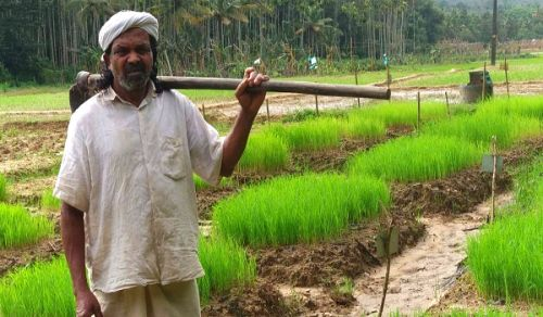 Deeply Oppressed Indian Farmers Are Sad Reminders of the Need for Khilafah in Pakistan, to Resume Islam's Caring Guardianship of the Region
