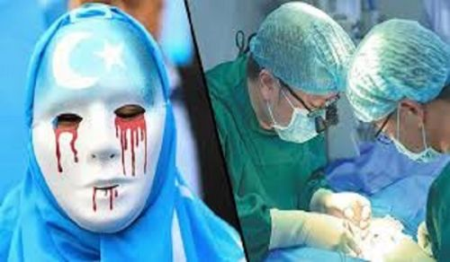 Organ harvesting – Another Atrocity against the Uighyr Muslims in China and Another Disgrace on the Rulers of the Muslim World